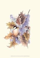 Chickadee and Oak Leaves Fine-Art Print