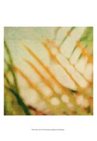 Tropical Texture I Fine-Art Print