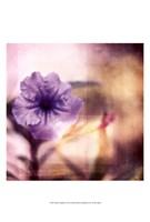 Purple Tranquility I Fine-Art Print