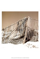 Fences in the Sand II Fine-Art Print