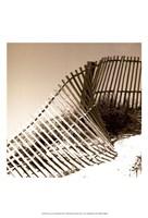 Fences in the Sand III Fine-Art Print