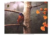 Bluebird Rain Fine-Art Print