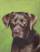 Dog Portrait-Chocolate Fine-Art Print