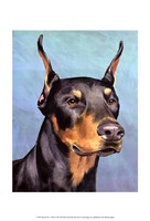 Dog Portrait-Dobie Fine-Art Print