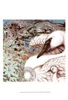 Swan Splash I Fine-Art Print