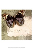 Butterfly Notes IV Fine-Art Print