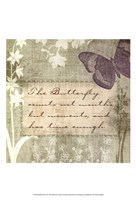 Butterfly Notes VII Fine-Art Print