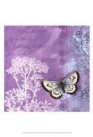 Butterfly Notes VIII Fine-Art Print
