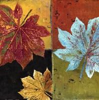 colorful maple II Fine-Art Print