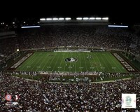 Doak Campbell Stadium Florida State University Seminoles 2011 Fine-Art Print