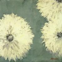 Floral Cache II Fine-Art Print