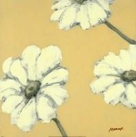 Floral Cache IV Fine-Art Print