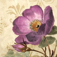 Pourpre Fleur I Fine-Art Print