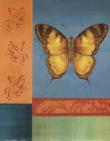 Colorful Wings II Fine-Art Print