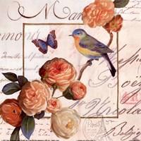 Jardin Des Papillons II Fine-Art Print
