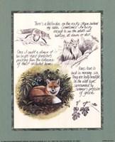 Fox Study Fine-Art Print