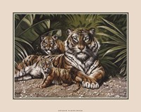 Yellow Tigers With Cubs Fine-Art Print