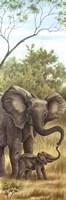 Mama Elephant with Baby Fine-Art Print