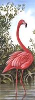 Flamingo 2 Fine-Art Print