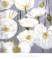 White Poppies Fine-Art Print