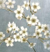 Silver Blossoms I Fine-Art Print
