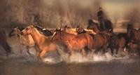 River Crossing Fine-Art Print