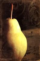 Vintage Pear I Fine-Art Print