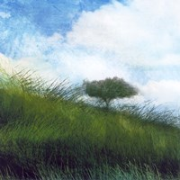 Bright Field IV Fine-Art Print