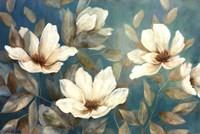 Shade Of Blue Fine-Art Print