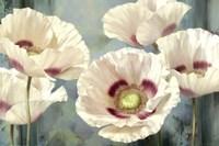 Tasmanian Poppies I Fine-Art Print