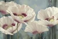 Tasmanian Poppies II Fine-Art Print
