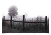 Fog and Fence Fine-Art Print