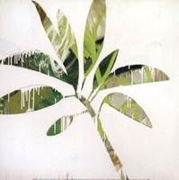 Tropical Landscape IV Fine-Art Print