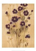 Aubergine Elegance Fine-Art Print
