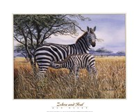 Zebra and Foal Fine-Art Print