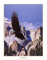 (Freedom) Eagle in Flight Fine-Art Print
