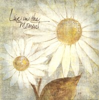 Daisy Do III - Live in the Moment Fine-Art Print