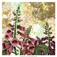 Foxglove Meadow I Fine-Art Print
