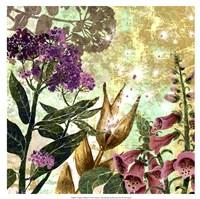 Foxglove Meadow II Fine-Art Print