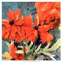 Poppy Play I Fine-Art Print