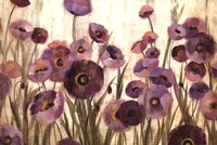Pink and Purple Flowers Fine-Art Print