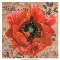 Poppy Swirl V Fine-Art Print