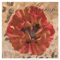 Poppy Swirl VI Fine-Art Print