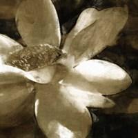 Bronze Lily III Fine-Art Print