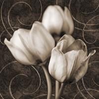 Tulip & Swirls I Fine-Art Print