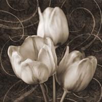Tulip & Swirls II Fine-Art Print