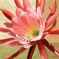 Desert Bloom I Fine-Art Print