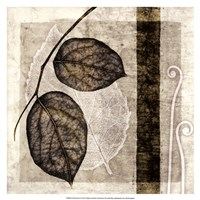 Fall Leaves II Fine-Art Print