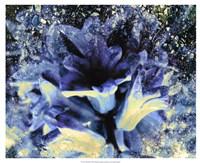 Silverbell I Fine-Art Print
