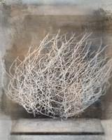 Desert Form V Fine-Art Print